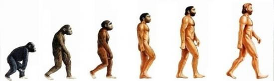 evolution-homme-2